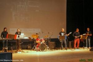 Dzien_Wolontariusza_2013_koncert