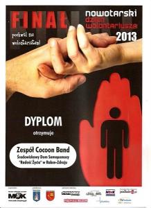 Dzien_Wolontariusza_2013_plakat